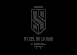 Werbeagentur Muelheim Oberhausen Logodesign steelisliving
